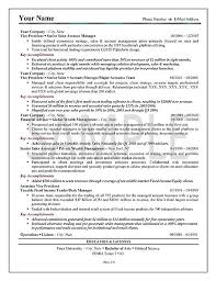 sample resume executive manager sales resume example