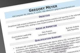professional resume com professional resume service