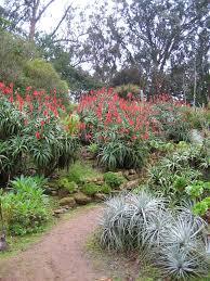 family garden sf sf botanical garden la dolce vita california