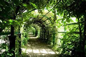 garten und landschaftsbau ausbildung ausbildung gärtner fachrichtung garten und landschaftsbau m w