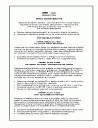 banking resume template bank manager resume template learnhowtoloseweight bank resume