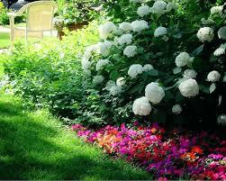 Shade Garden Ideas Shade Garden Borders Repeat Colors Shade Garden Border Plants
