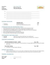 Government Resume Template Std Resume Format Standard Resume Templates To Impress Any