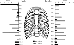 distribution of eburnation on each joint surface in the rib cage for