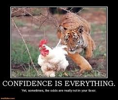 Everything Meme - confidence is everything funny tiger meme picture