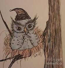 baby owl drawings fine art america