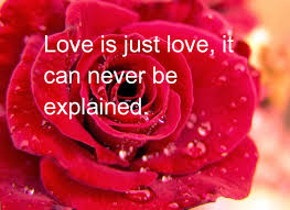 love quotes for him youtube valentine fantastic best valentines day quotes for wife