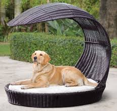 Pet Chaise Dog Rattan Chaise Lounger With An Integrated Canopy Smart Pet