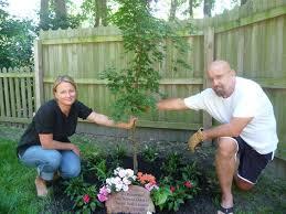 pet memorial ideas for the garden nofancyname co