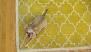 Pet Resistant Rugs A Kitchen Renovation Isn U0027t Complete Without Accessories And