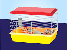 Cheap Rat Cage How To Set Up A Mouse Cage 12 Steps With Pictures Wikihow
