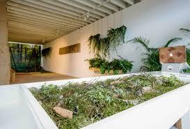 Nature Concept In Interior Design Biofit Why Biophilic Gyms Are The Future