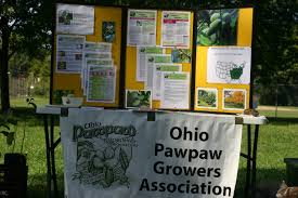 native plants of ohio native plants lower olentangy urban arboretum