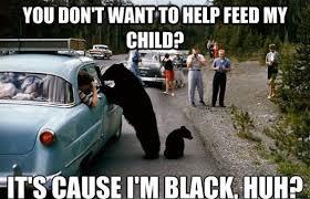 Meme Haha - lol meme haha 2014 black bear