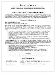 resume information technology manager information technology resume template director of it sle entry