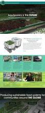 backyard aquaponics website aaron bergman