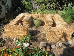 our new straw bale garden u2013part i root simple