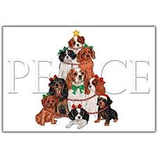 cavalier king charles cards peace 10