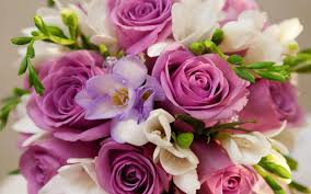 roses jigsaw puzzles android apps on google play