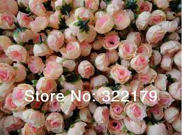 bulk flowers wholesale 500x chagne silk heads cheap artificial flower