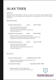 combination resume templates examples of combination resumes