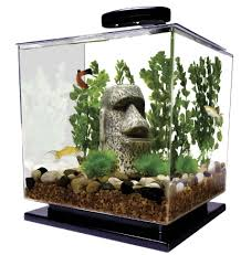 40 cool aquarium ideas well done stuff