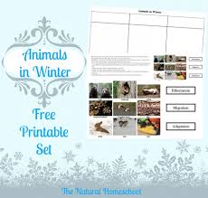 free animals in winter printable and lesson migration