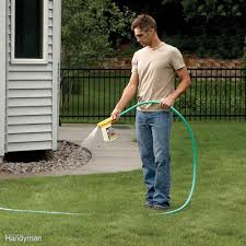 best way to get rid of mosquitoes in yard best ideas about