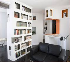Bookcases As Room Dividers Bookcase Room Divider Ideas Home Design Ideas