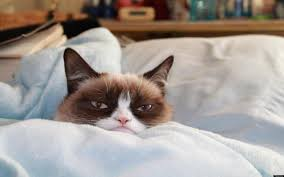 Grumpy Cat Meme No - have the worst christmas ever with grumpy cat s new lifetime movie