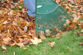 Fall Cleanup Landscaping by Seasonal Landscaping Tips Fall Cleanup For Apartment Properties