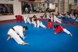 moo do taekwondo moodohe international austin texas 2017 1594 u2013 moo do he