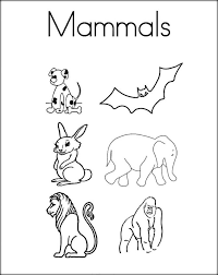 coloring pages mammal coloring pages chalicotherium mammal