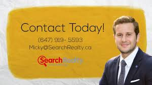 micky lehava real estate agent youtube