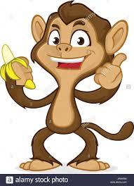 baby monkey eating banana stock photos u0026 baby monkey eating banana