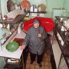 frances gabe built a u0027self cleaning house u0027 in oregon daily mail