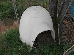 Dog Igloos Small Igloo Dog House Igloo Dog House Ideas The Place Cat And