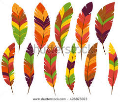 turkey feathers stock images royalty free images vectors