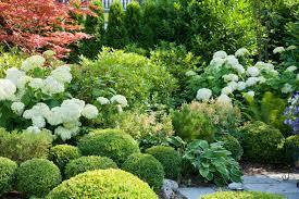 idee amenagement jardin devant maison chouettes idées pour parterres situés à l u0027ombre femmes d u0027aujourd u0027hui