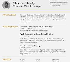successful resume resume example