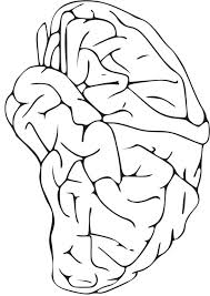 Brain Anatomy Coloring Pages Brain Coloring Page Coloring Pages Brain Coloring Page