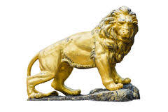 gold lion statue golden lion statue isolated royalty free stock image image 17981886