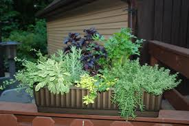 Creative Containers For Gardening Garden Design Garden Design With Garden Containers Pots And
