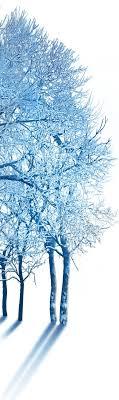 winter homepage hyde park winter