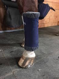 no bow wraps draper equine therapy no bow wraps therapeutic equine leg wraps