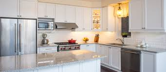 how to clean cupboards after pest common kitchen insects how to get rid of kitchen bugs