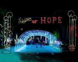 Pics Of Light by Lights Of Hope U2013 Hope For North Brevard Inc