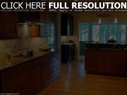 beautiful how to stain kitchen cabinets without sanding gel design