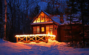 winter winter colorful peaceful time forest evening lights night