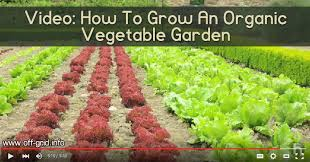 video how to grow an organic vegetable garden off grid